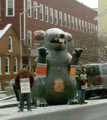 Scabby the Rat at a 2010 picket line in Cambridge, Massachusetts (credit: Joseph Ballirali/en.wikimedia)